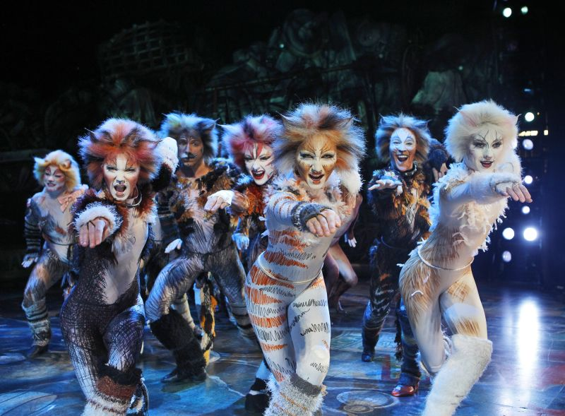 purrly theatrical magic cats at the segerstrom center for the arts