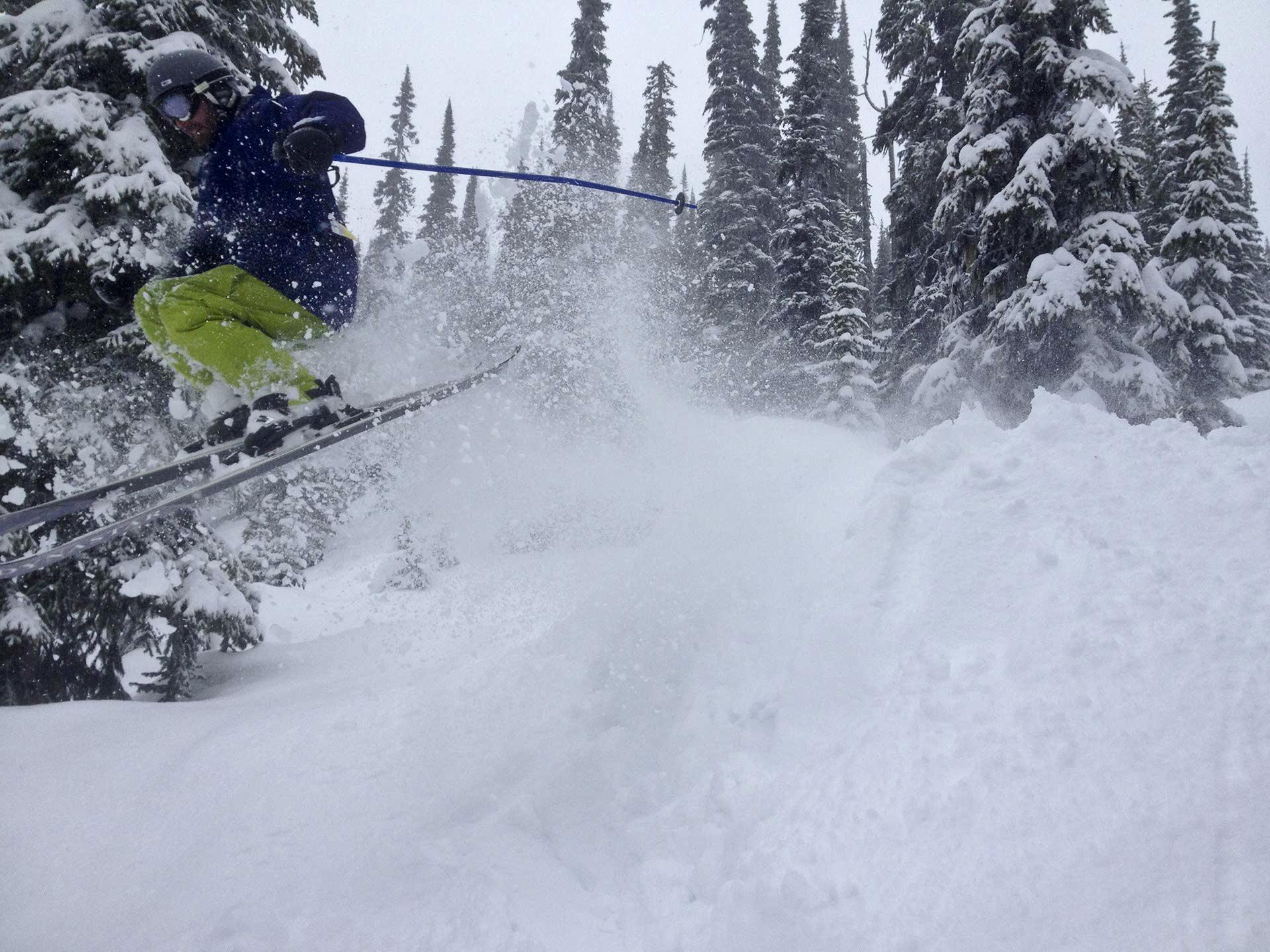 heli skiing fresh powder