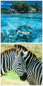 Fiji & Africa