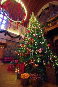 Christmas Tree Biltmore