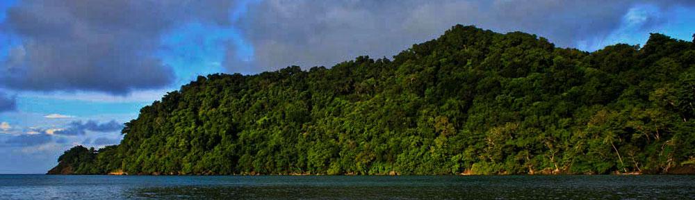 Fiji-Resorts