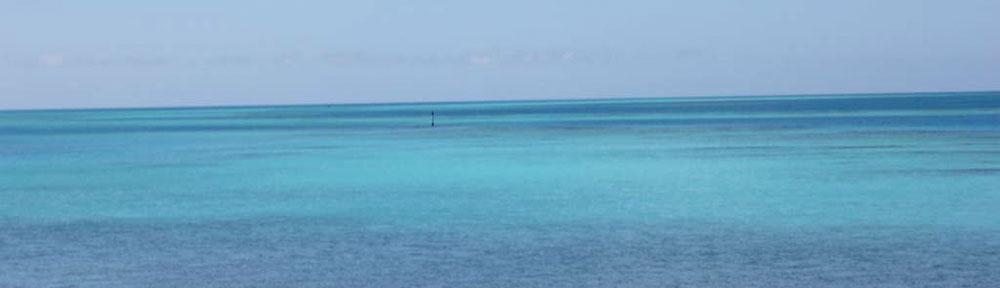 Bermuda-M.V.-Destiny