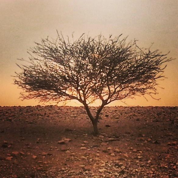 Feynan Sunset, Jordan