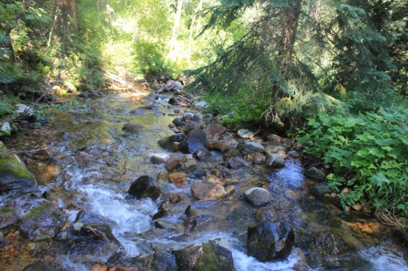 Hiking Beaver Creek
