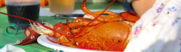 Lobster-Feast-in-Moncton