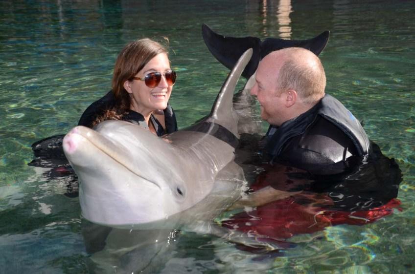 Dolphin Quest, Waikoloa