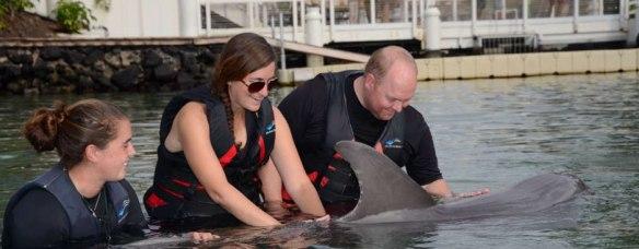 Dolphin-Quest,-Waikoloa