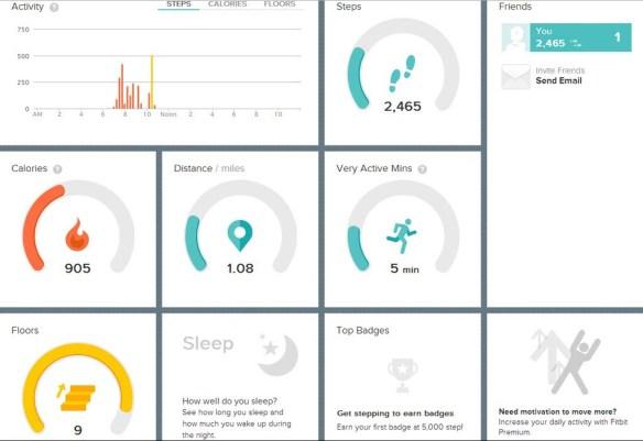FitBit Activity Chart