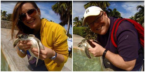 Cayman Turtle Farm - Baby Turtles