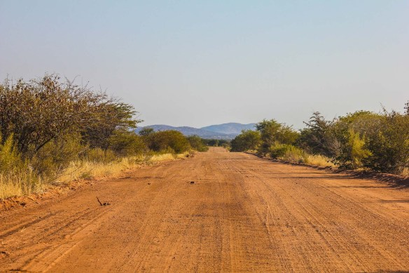 Etosha National Park Safari Roads