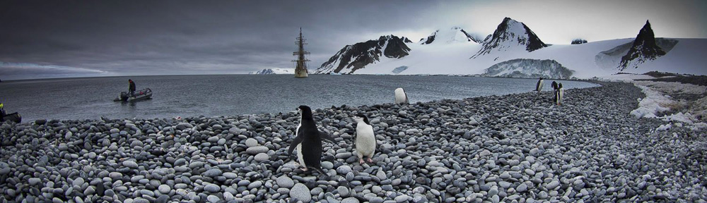 Antarctica with Bark Europa