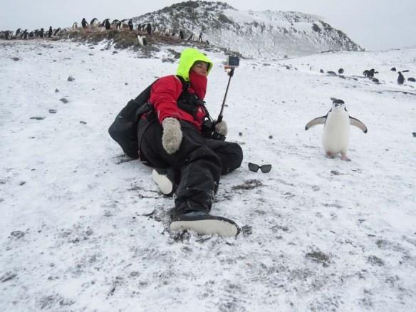 Altcho Landing Penguin Selfie