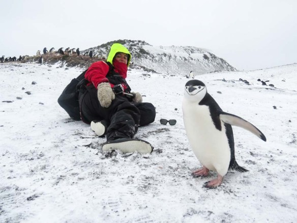 Selfie with a Penguin in Antarctica