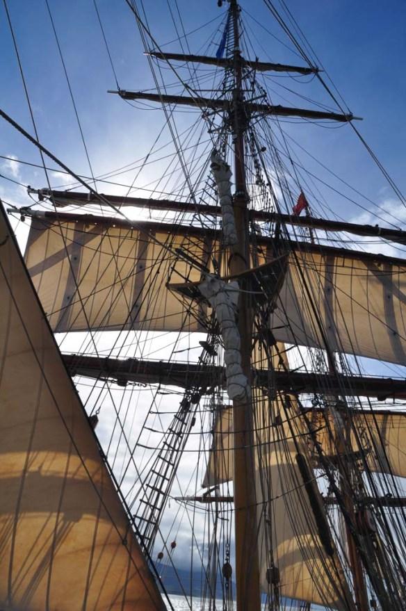Sails on Bark Europa