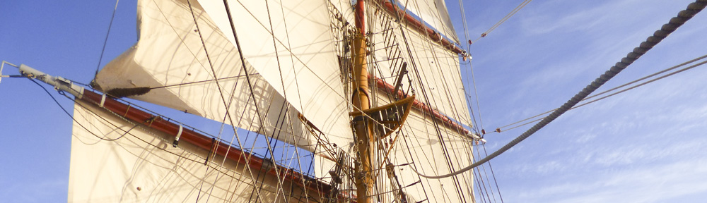The Rigging on Bark Europa - Antarctica