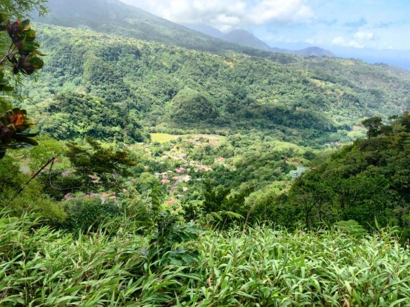 Mountain Views in Dominica