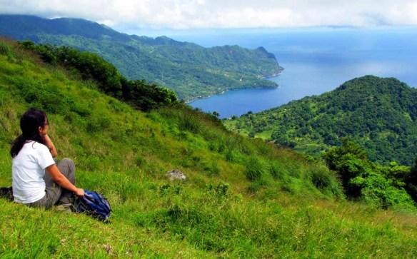 Palmiste WNT, Dominica