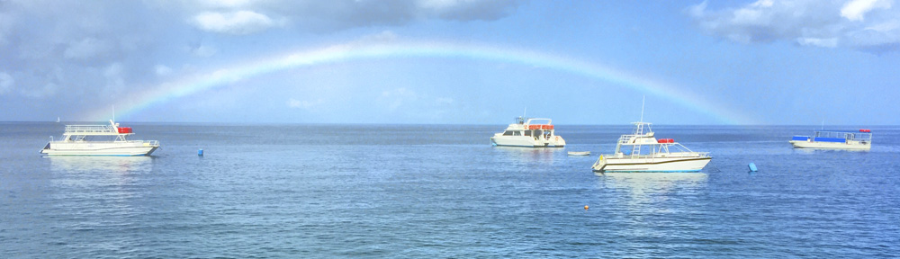 Rainbows & Sunshine - Dominica