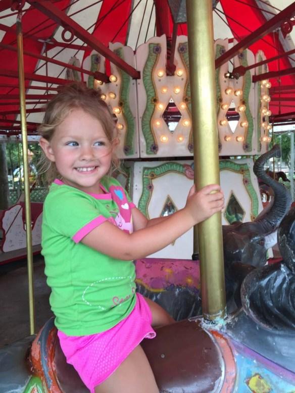 The carousel at Lion Country Safari, Palm Beach