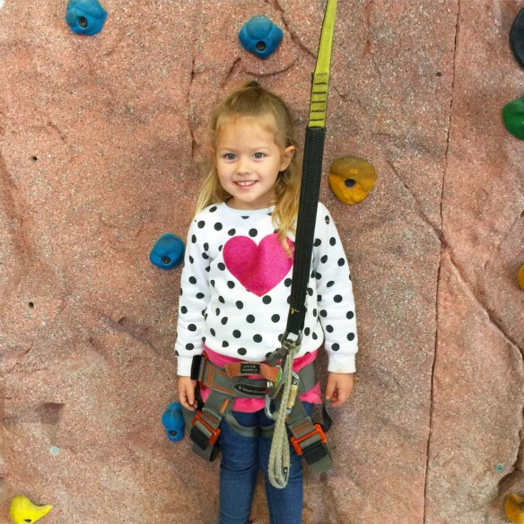 Rock Climbing at High Point in Chattanooga