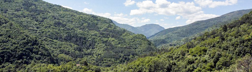 Hills in Bulgaria