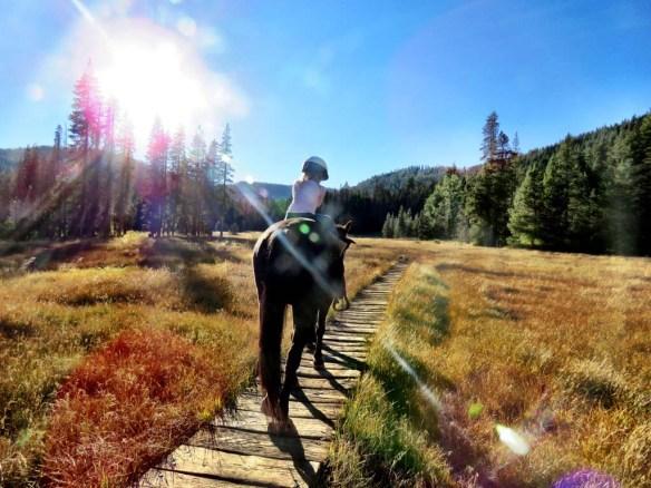 Riding horses at Drakesbad Guest Ranch