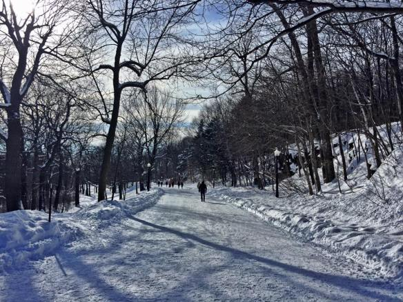 Mount Royal, Montreal, Quebec, Canada